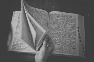 מילון מקוון
